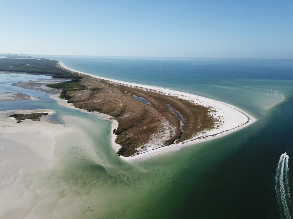 Clearwater-Calidesi-Island-Fishing-charter-shot.jpg