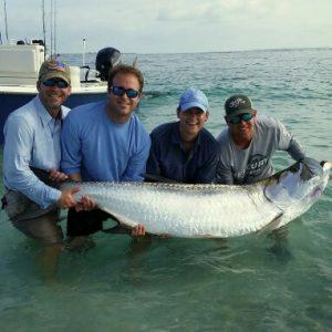 Tarpon Fishing Charter Clearwater beach