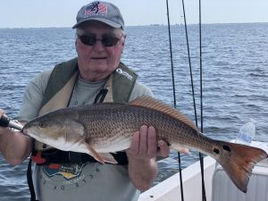 Tampa Fishing Charters Redfish trips