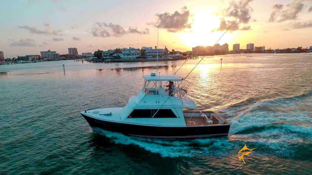 offshore fishing charters clearwater beach